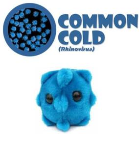 giantmicrobescommoncold